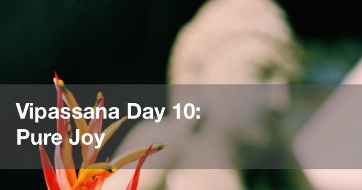 Vipassana Day 10 in Yangon Burma (Rangoon, Myanmar)